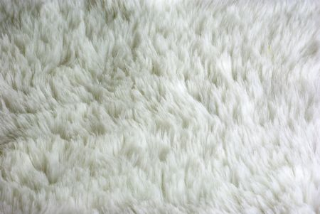 Background of a white wool