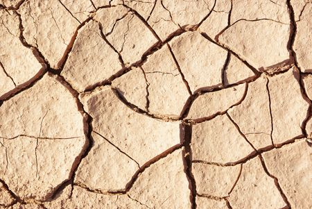 Cracked and dried mud texture photo