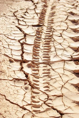 mud print: trace of tyre in the Dry land