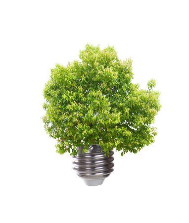 Environment-friendly energy-saving light bulbs Stock Photo - 5955549