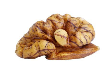 Walnut on the white background (isolated). Stock Photo - 6659812