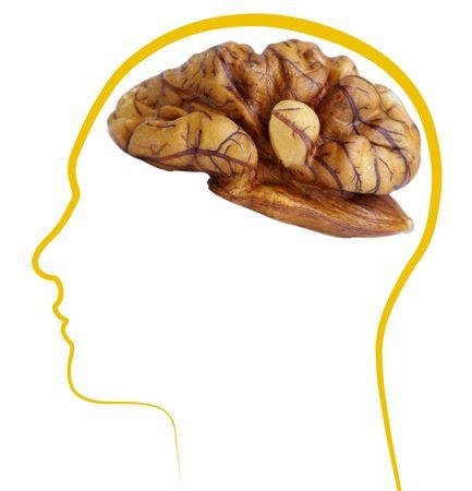 クルミの良い脳の健康分離した白い背景の上 写真素材