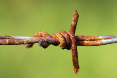 The barbed wire is isolated on a background of the Green photo