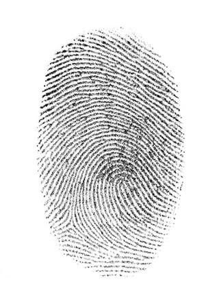 白の背景に分離された指紋
