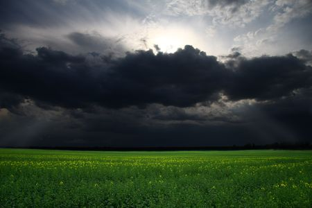 could: Storm over the green meadow field