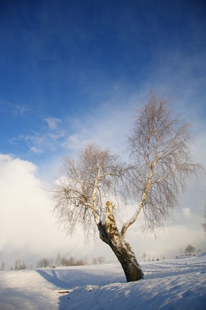 cloudless: Impressive winter landscape with dark clouds over sky