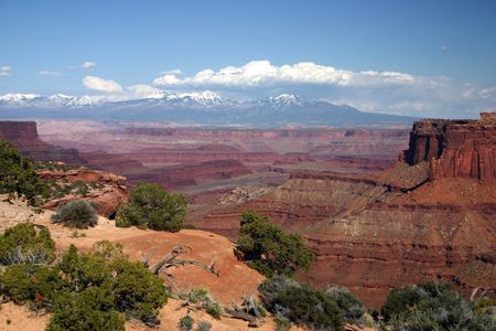 A view of Canyonlands National Park Stock Photo