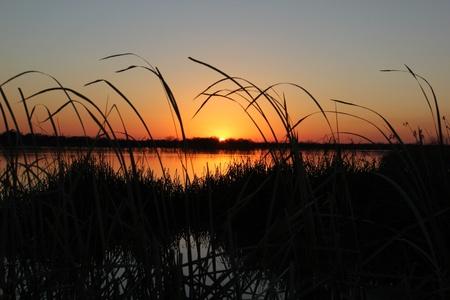 The sun going down over a Texas wetlands Stock Photo