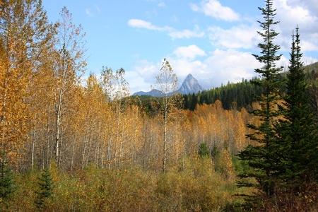 Autumn in the Rocky Mountains Stock Photo