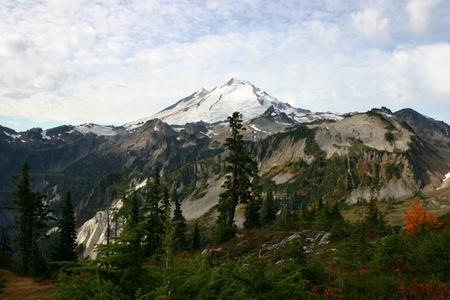 A view of Mt Baker from the Meadows Stock Photo