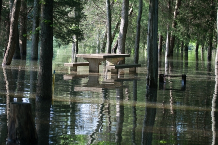 A flooded picnic area