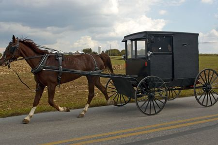 amish buggy: AN AMISH Horse and Buggy ride in Lancaster, PA
