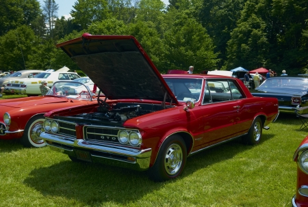 A High Horse Power Muscle Car at Show