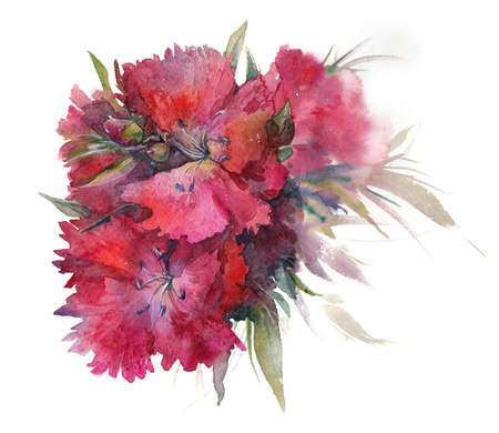 Watercolor with garden flowers bouquet red scarlet buds Turkish carnation
