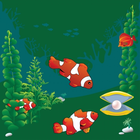 Clown fish and a pearl in the shell on a green background. Vector