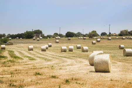 bales: Round bales of hay in Ragusa Modica Stock Photo