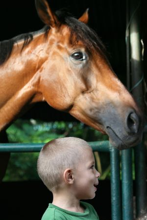 kid smiling in front of a horse