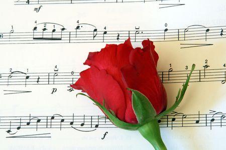 music score: red rose on music score Stock Photo