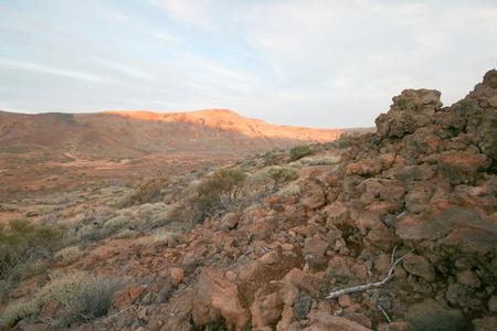 canarias: volcanic landscape on tenerife canarias island