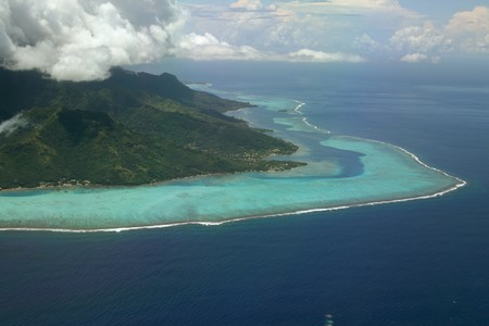 polynesia: coral reef of moorea, French Polynesia