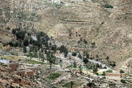 oasis at the bottom of a valley in african desert