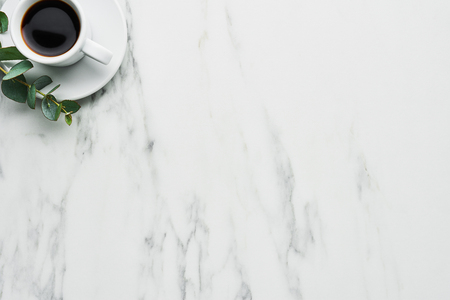 Cup of coffee with eucalyptus on a marble table with copy space for text. Top view.