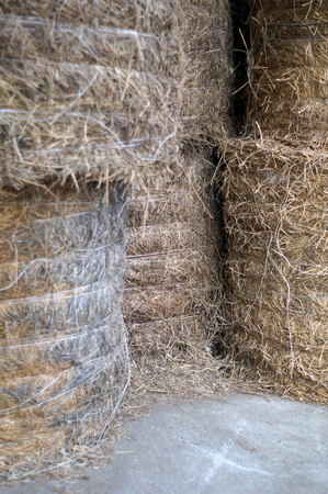 fostering: Hay bales - focus on the center