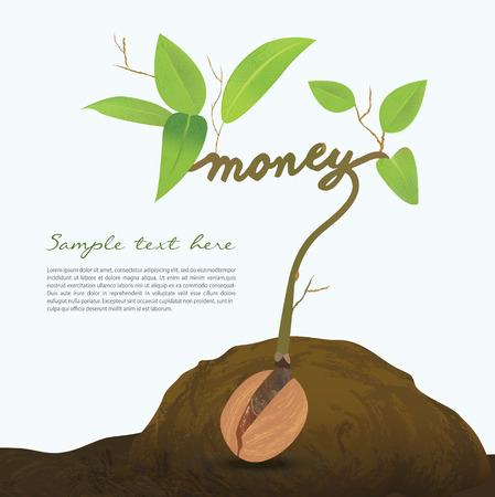 small plant: Creative seed idea abstract info graphic, concept image of small plant sprout