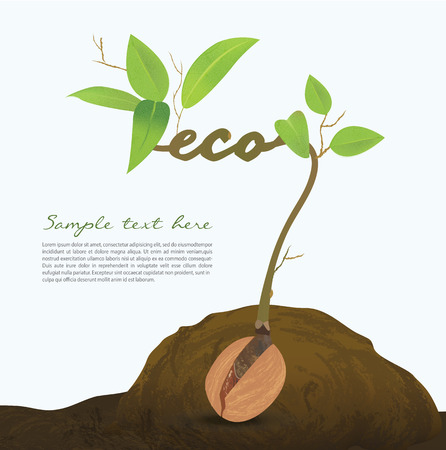 Creative seed idea abstract info graphic, concept image of small plant sprout