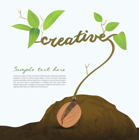 plant seed: Creative seed idea abstract info graphic, concept image of small plant sprout