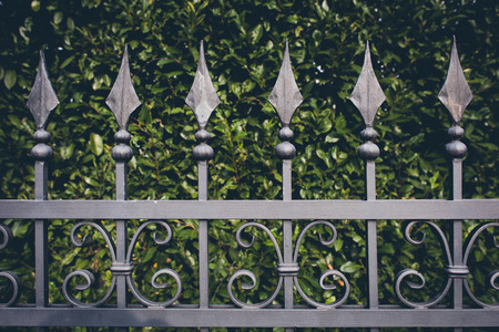 metals: iron fence with green leaves background