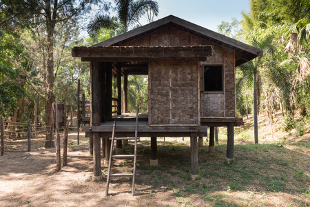 country house style: Traditional Thai rustic wooden house on garden,Thai style wooden hut