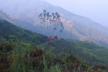 Hills around the road have beautiful greensward