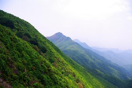 travelling at top of mounain at south china Banco de Imagens