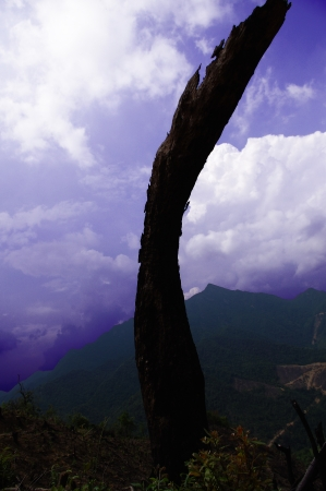 clouds around the mountaintop of nanling ridge Stock Photo - 16981397