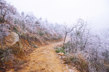 snow on rodadafter great snow at chinese south pro Guangdong photo