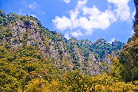 foothill: spring at nanling ridge of south china,Qimuzhang mountain