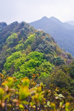 High mountain with great rocks at south china Stock Photo - 16981496