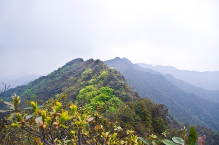 High mountain with great rocks at south china Banco de Imagens