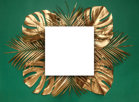 Shiny golden natural tropical date palm and monstera leaves creatively arranged on deep green background. Blank empty card room for text. Luxury fine border frame. Foto de archivo