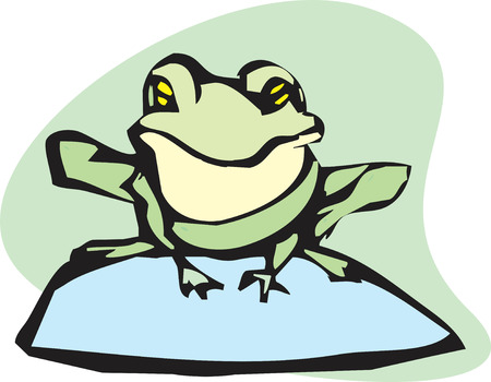 lily pad: Frog sitting on a rock looking at you. Illustration