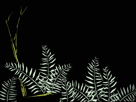 Ferns in the Forest Illustration