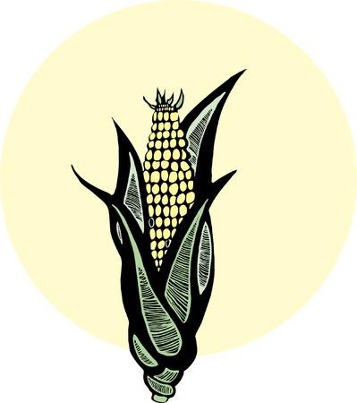 Oor van maïs afgebeeld in de stijl van houtsnede.  Vector Illustratie