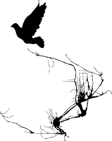 entwine: Shadow of a bird takes wing from the branches of a tree.
