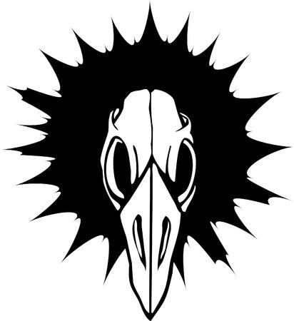 eye sockets: Bird Skull in black rays.