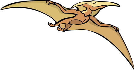 간접비: Pterodactyl dinosaur flying overhead in isolated image.