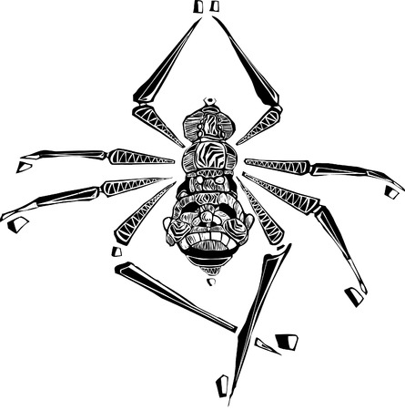 Arachne the woman turned into a spider rendered in woodcut style.  Vector