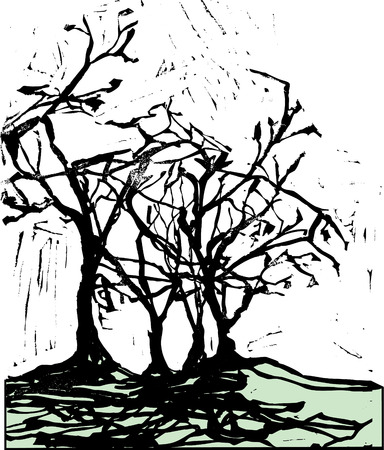 harsh: Harsh shadows of trees in the style of a woodcut.