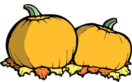 Two orange pumpkins in a Halloween Pumpkin Patch Vector