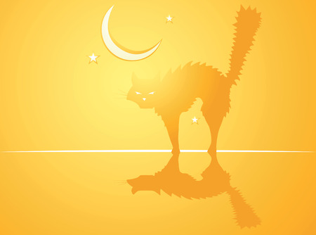 softly: Softly orange colored desktop background, halloween themed with witchs cat.
